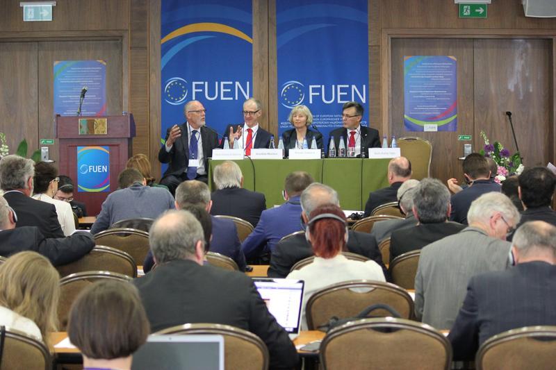 Федералистский союз европейских национальных меньшинств (FUEN)