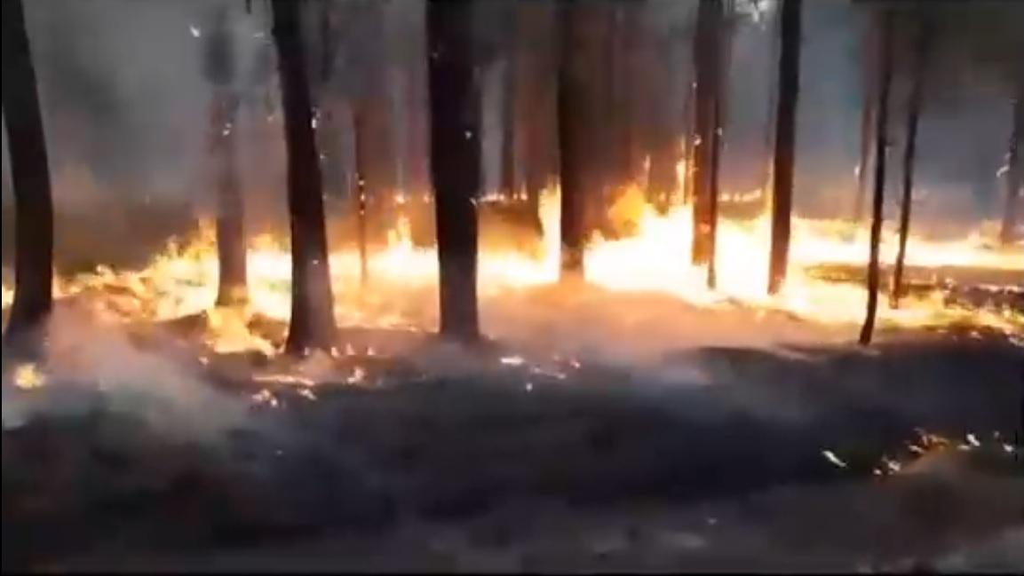 Пожар в Республике Коми